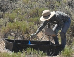 Field research with soil