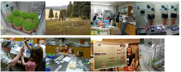 Collage of photos showing de Graaff's work and community outreach