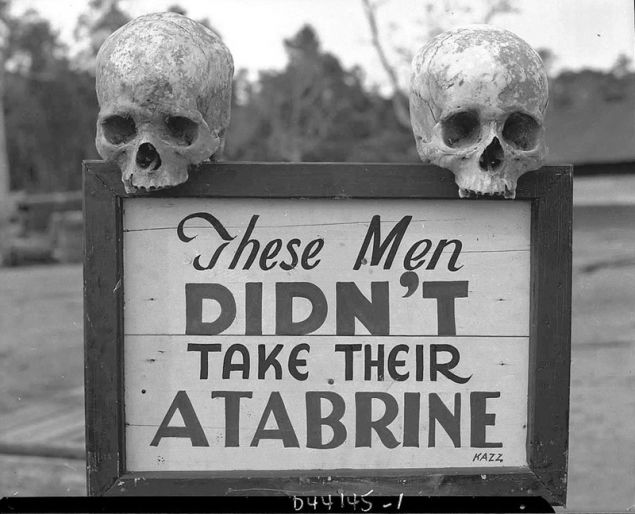 Two skulls perched on sign that reads These mend didn't take their atabrine, photo