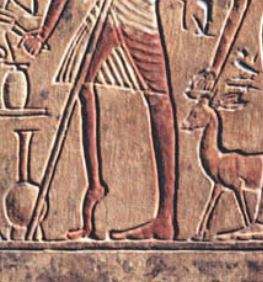 Close up of man's foot in stele, photo