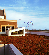 COBE roof with balloons