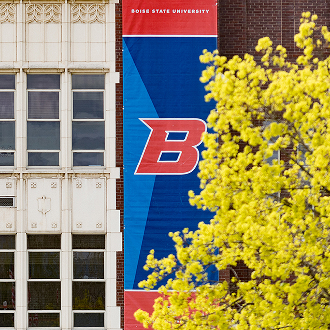 B banner with tree blossoms