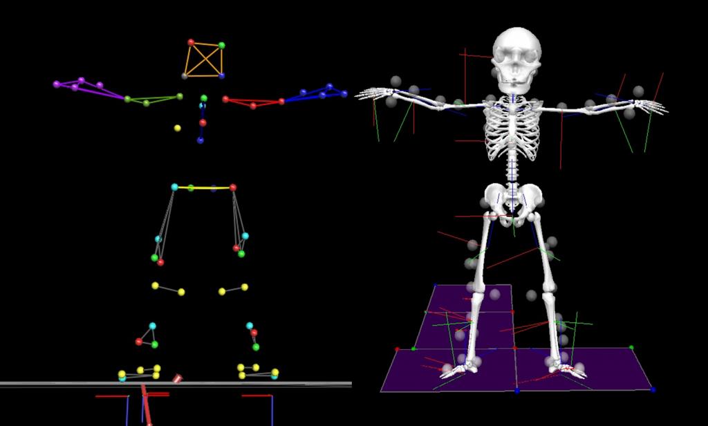 skeleton calibration