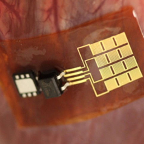sensory chip