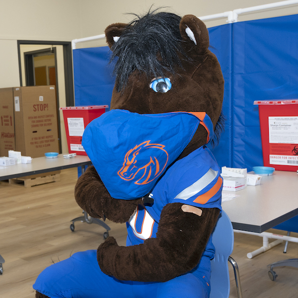 Buster Bronco with a mask and bandage