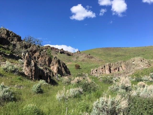 Reynolds Creek Rhyolite