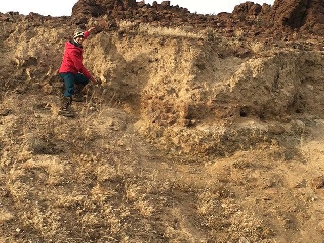Rhyolite Stratigraphy
