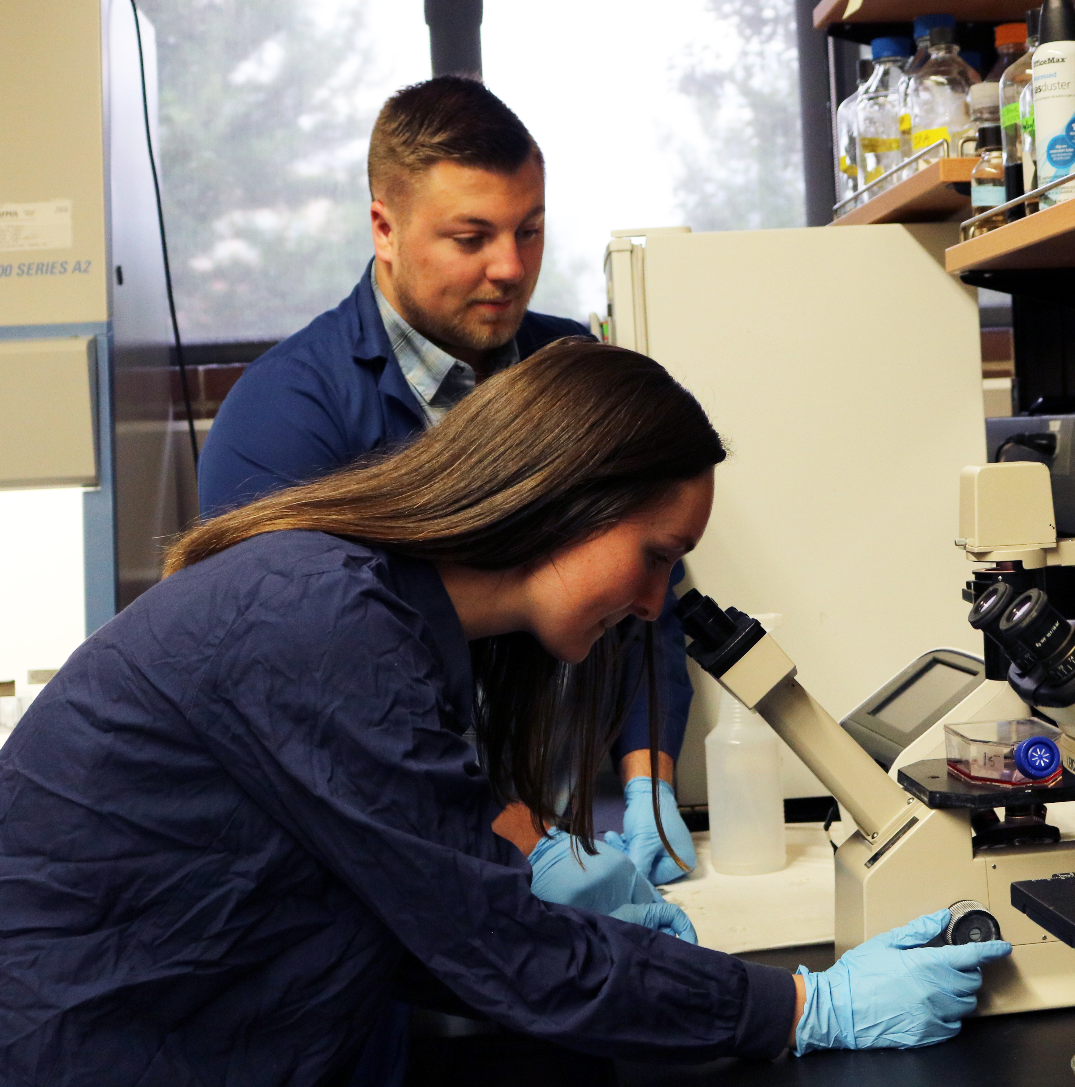 Students working in lab