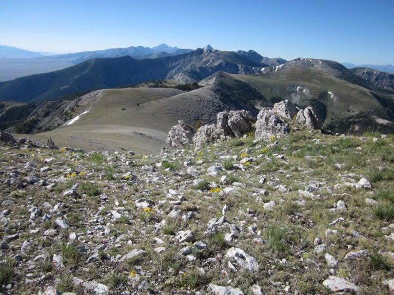 Lemhi Range vista of rocks and peaks