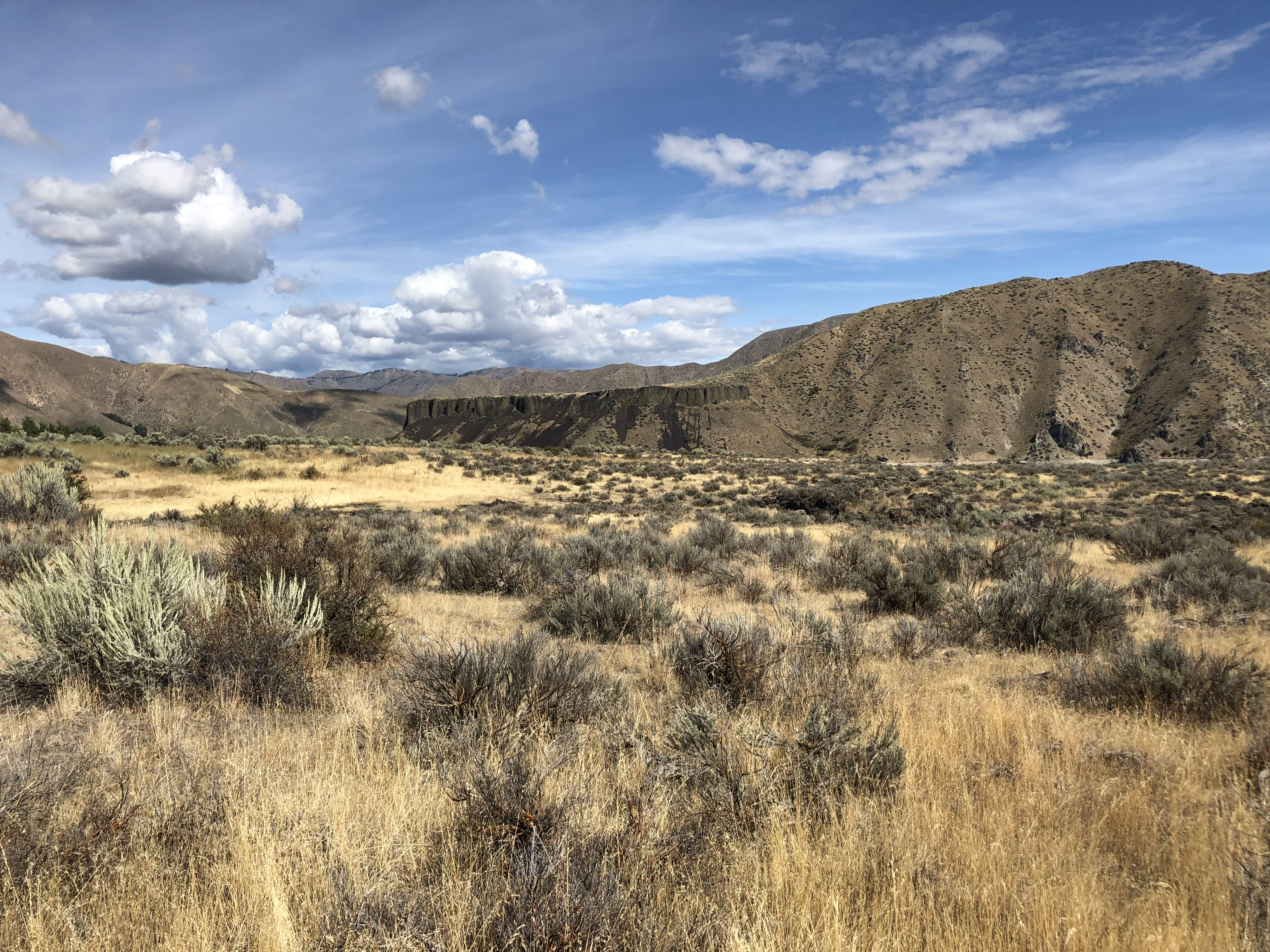 Idaho landscape featuring sagebrush and grasses, with foothills in the background