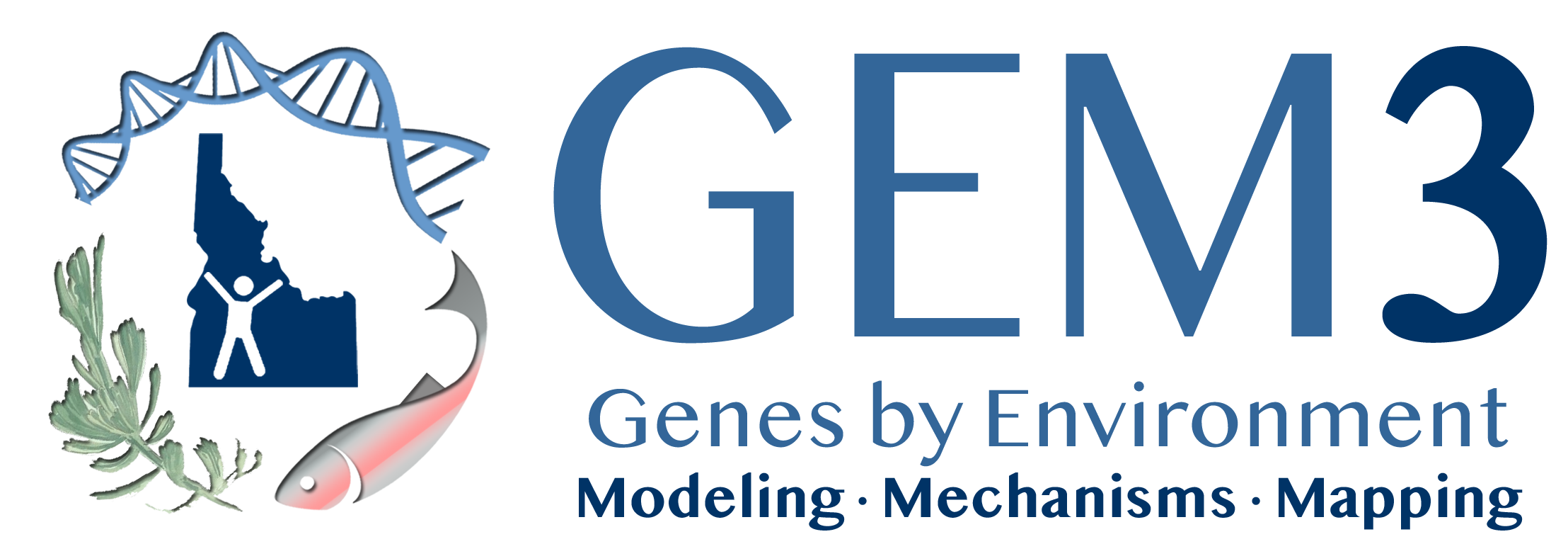 GEM3, Genes by environment, Modeling, Mechanisms, Mapping - logo