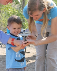 child holds a Bewick's Wren