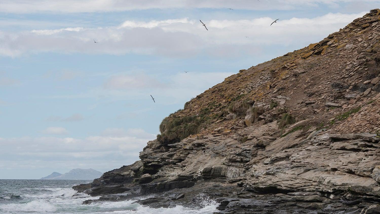 Falklands_2018_023