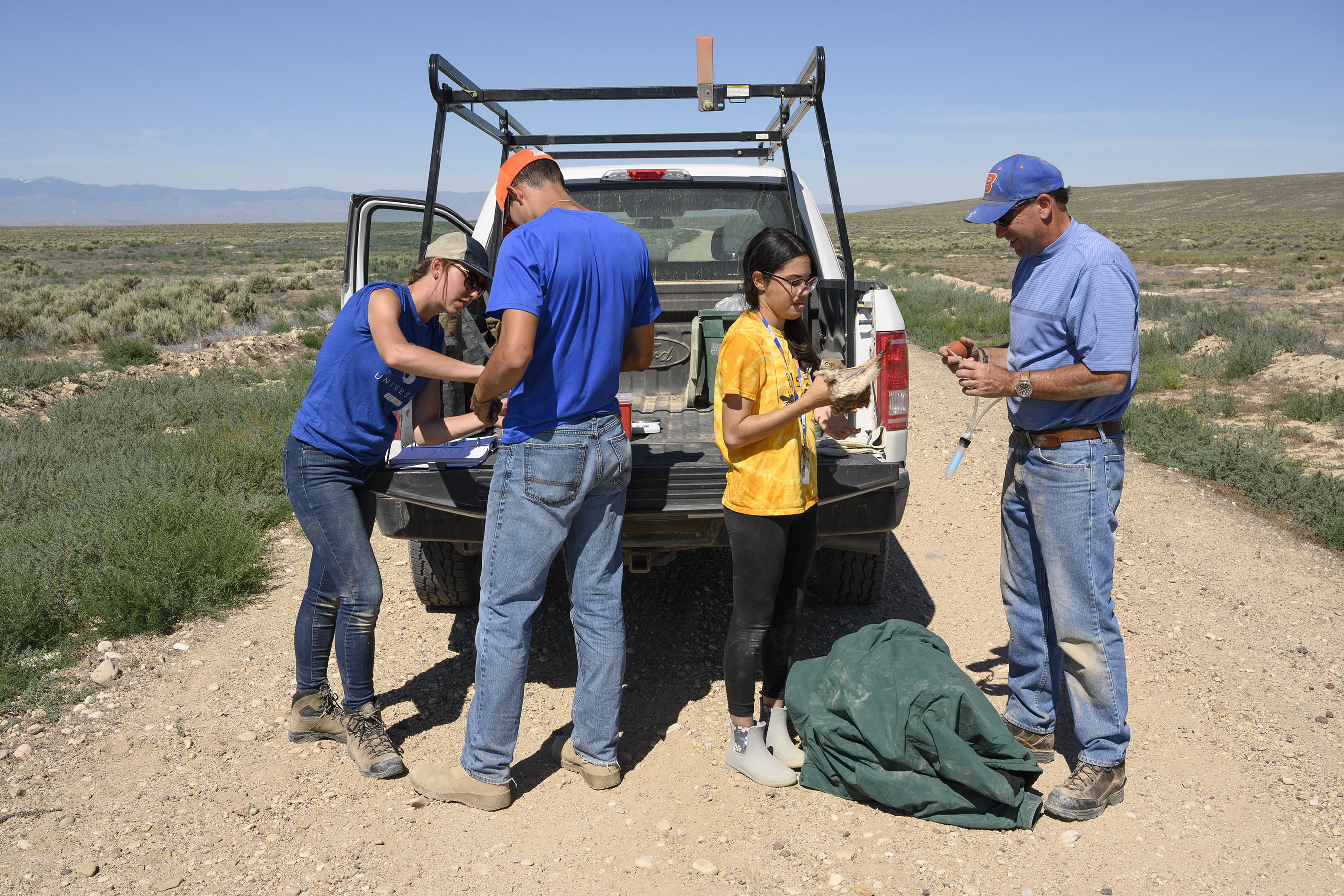 Professor Belthoff and three students work behind pick up truck