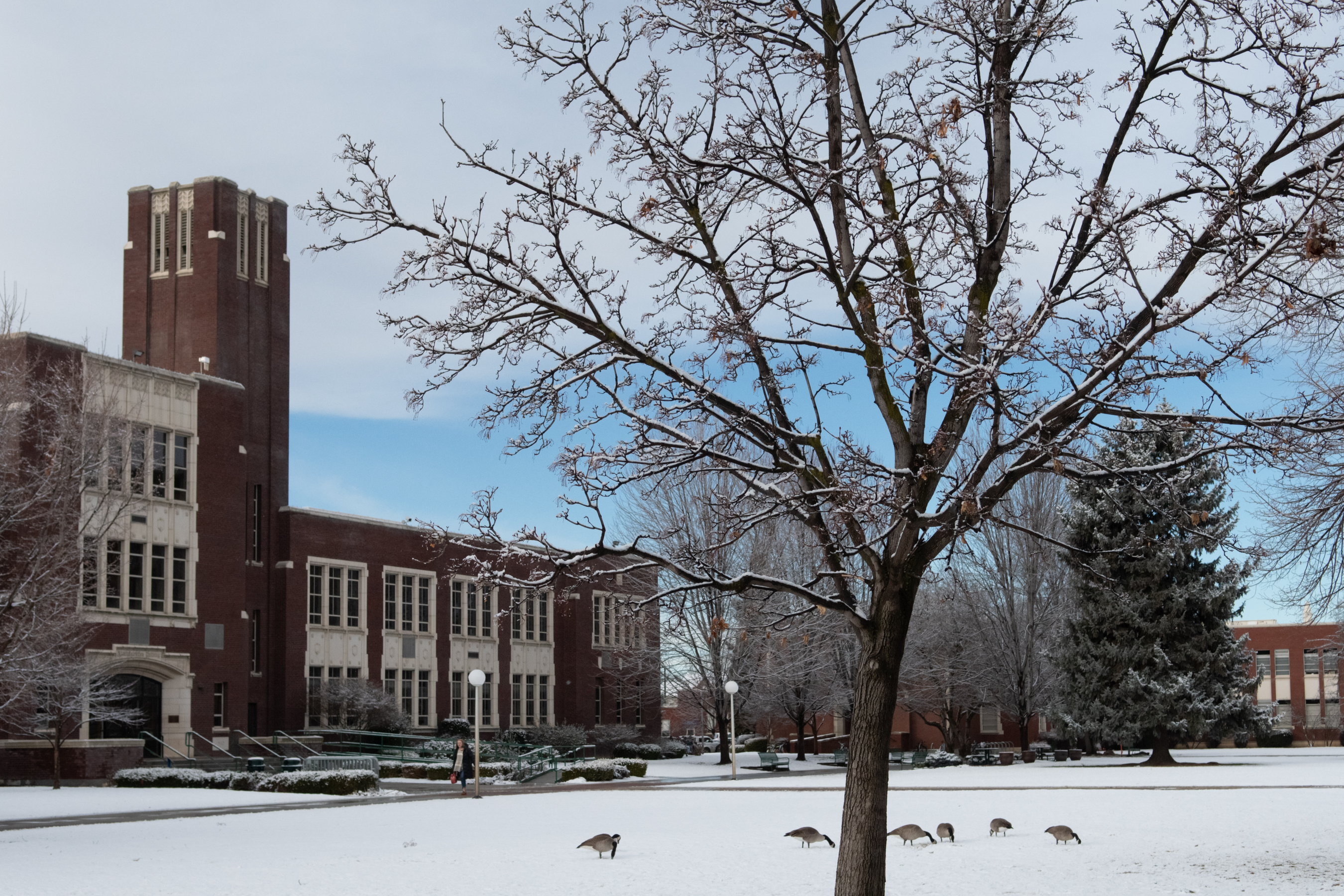 Boise State Christmas Break 2020 Be ready for winter weather this weekend, next week   Boise State News