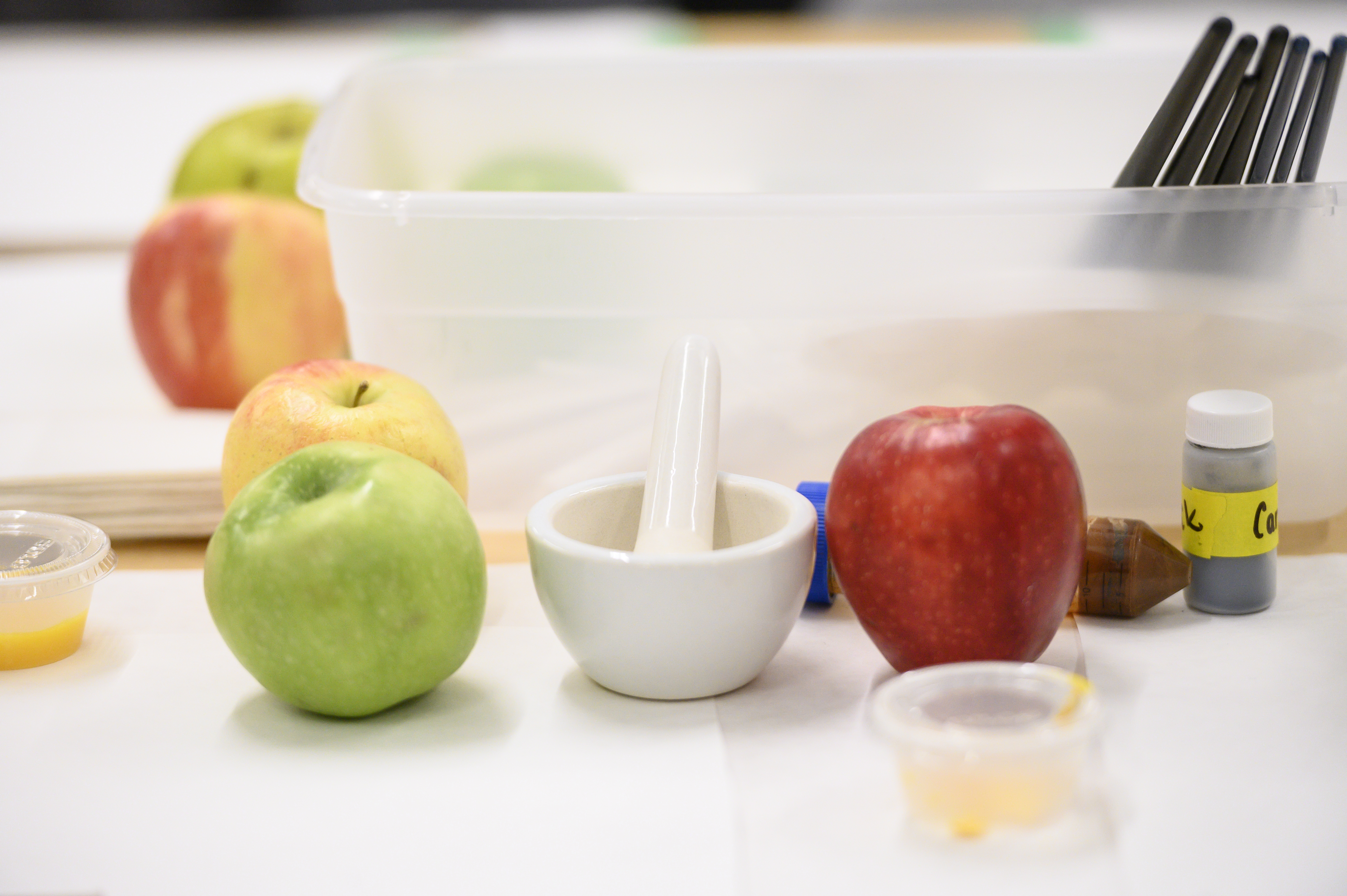 Green and red apple beside mortar and pestle