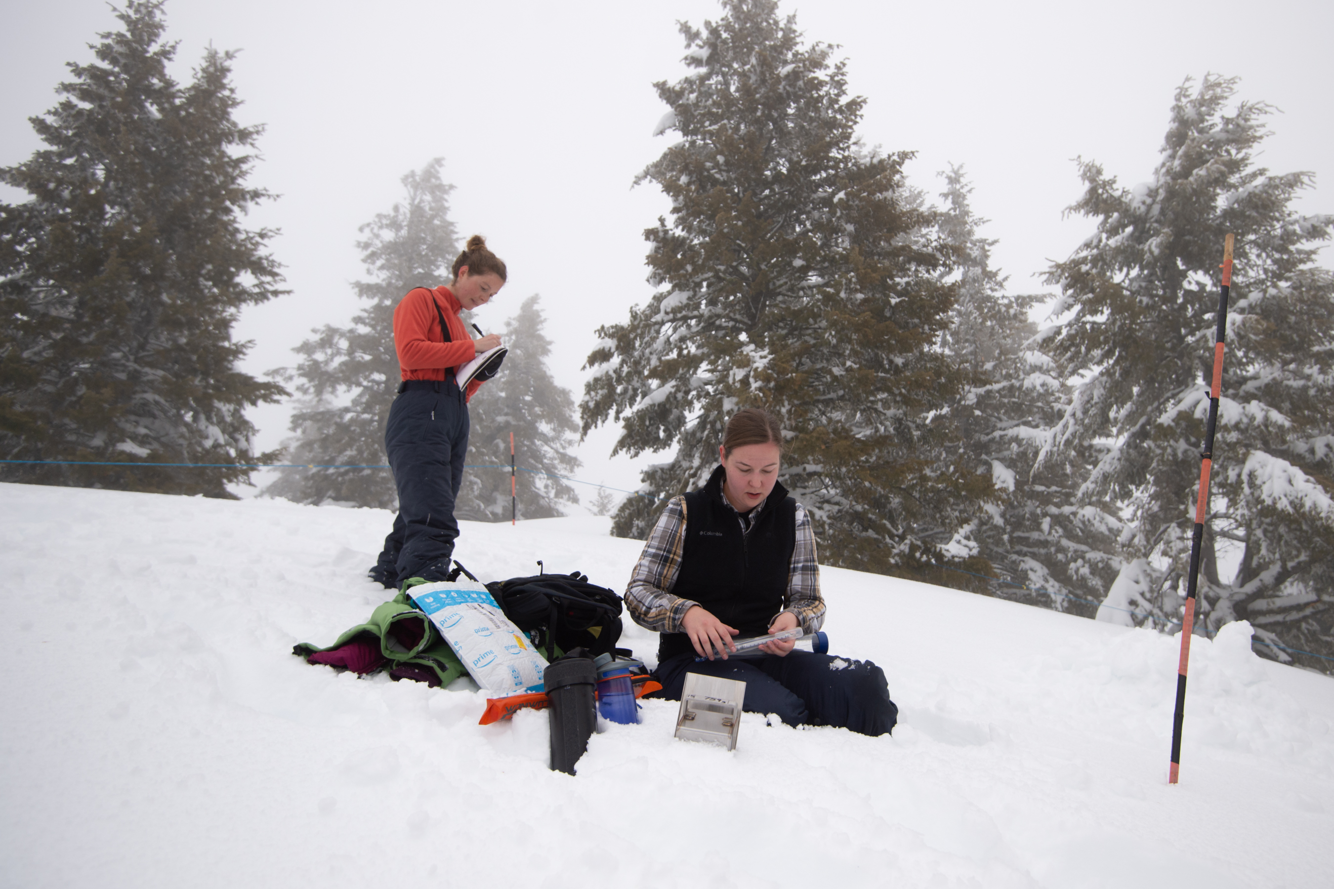 https://www.boisestate.edu/news/2020/02/24/students-support-nasa-snowex-research-gain-first-hand-experience/