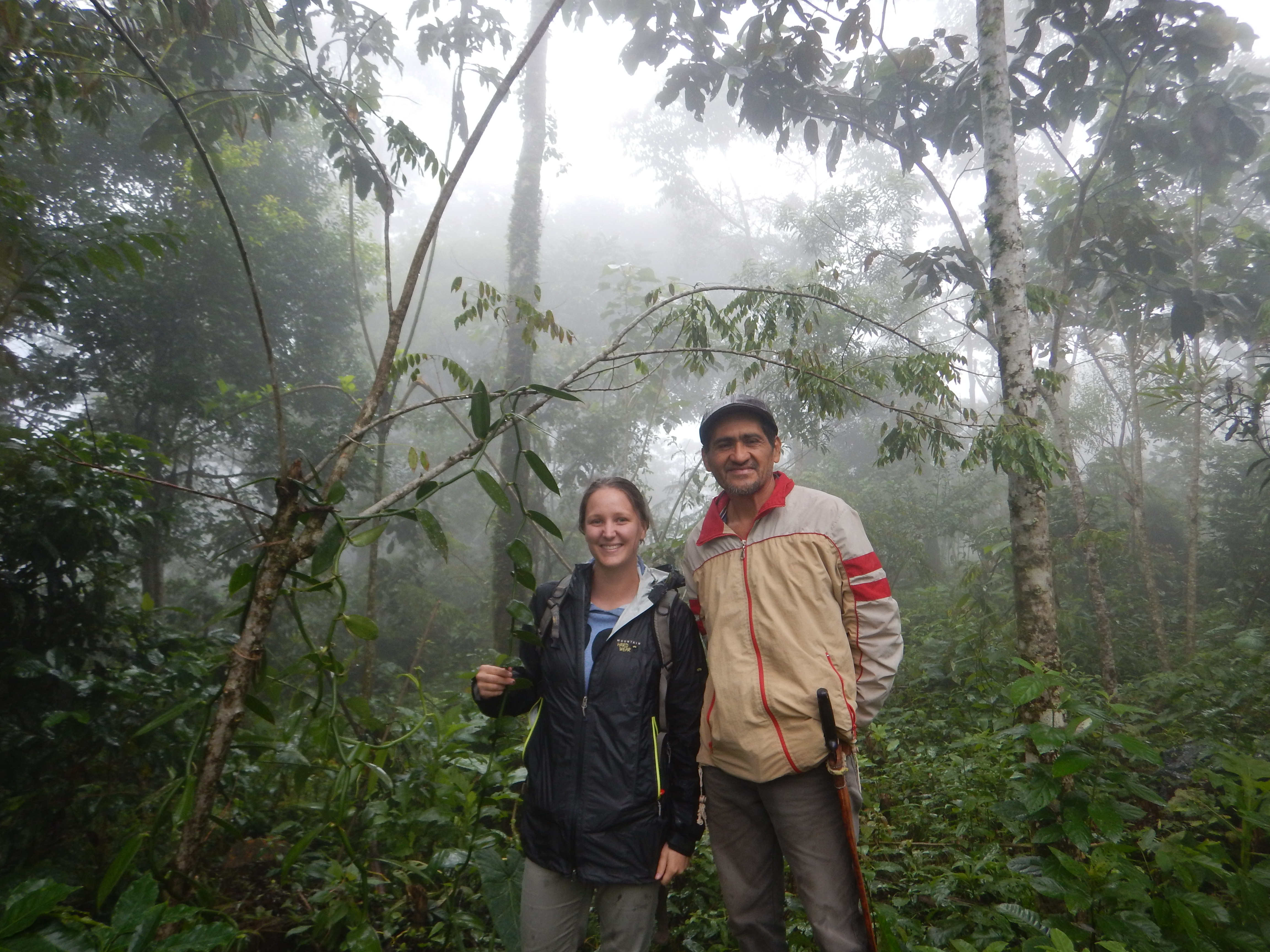 two people stand in rain forest