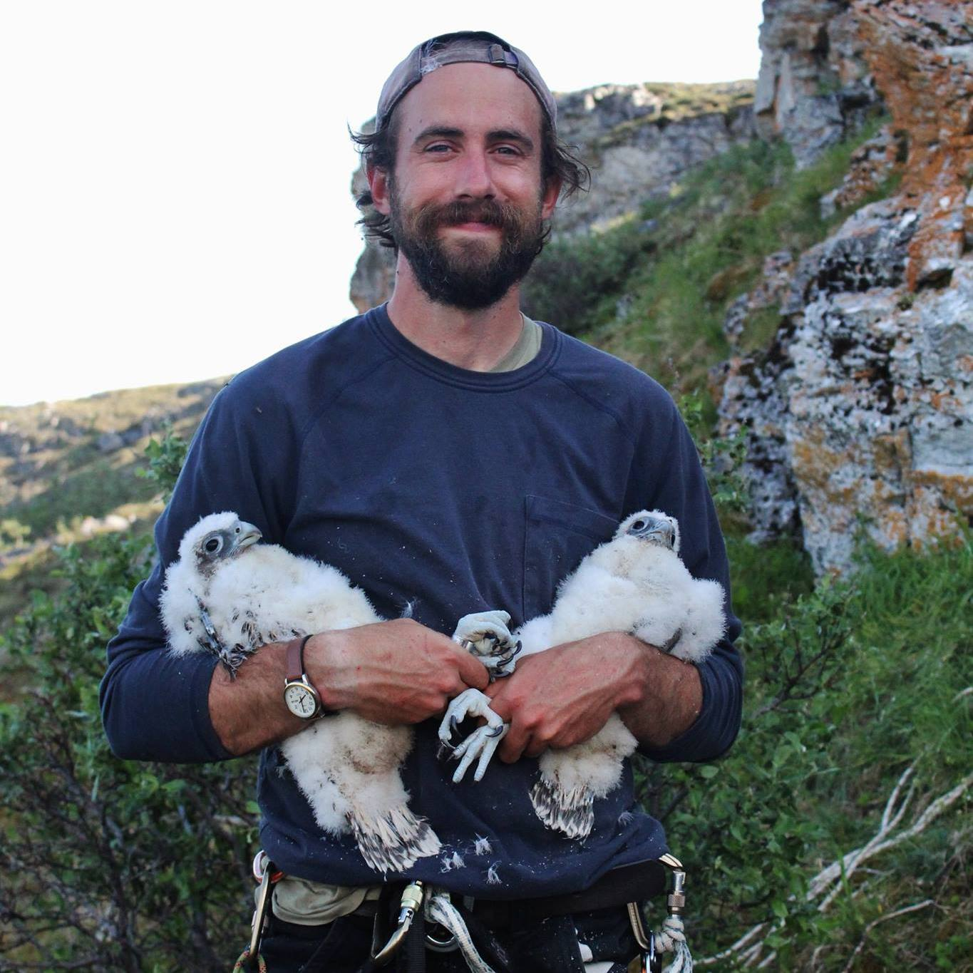 Bryce Robinson with immature Gyrfalcons