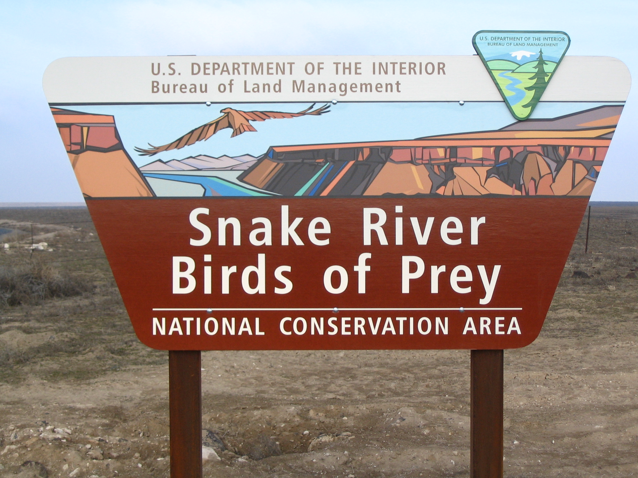 snake-river-birds-of-prey