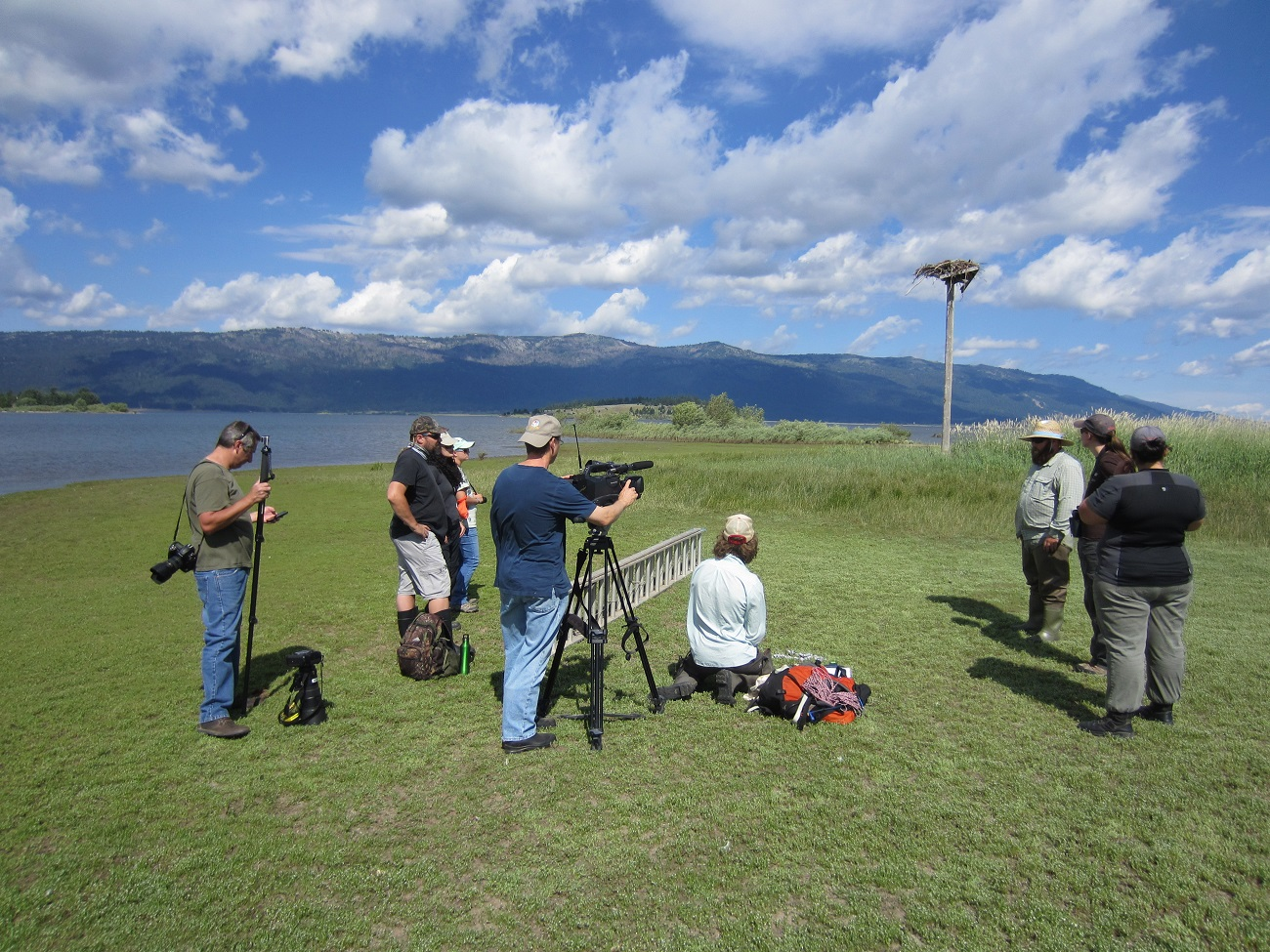 Osprey banding near Cascade, Idaho with a nest in the background and people in the foreground
