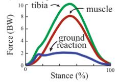 graph, contact presenter for specific data
