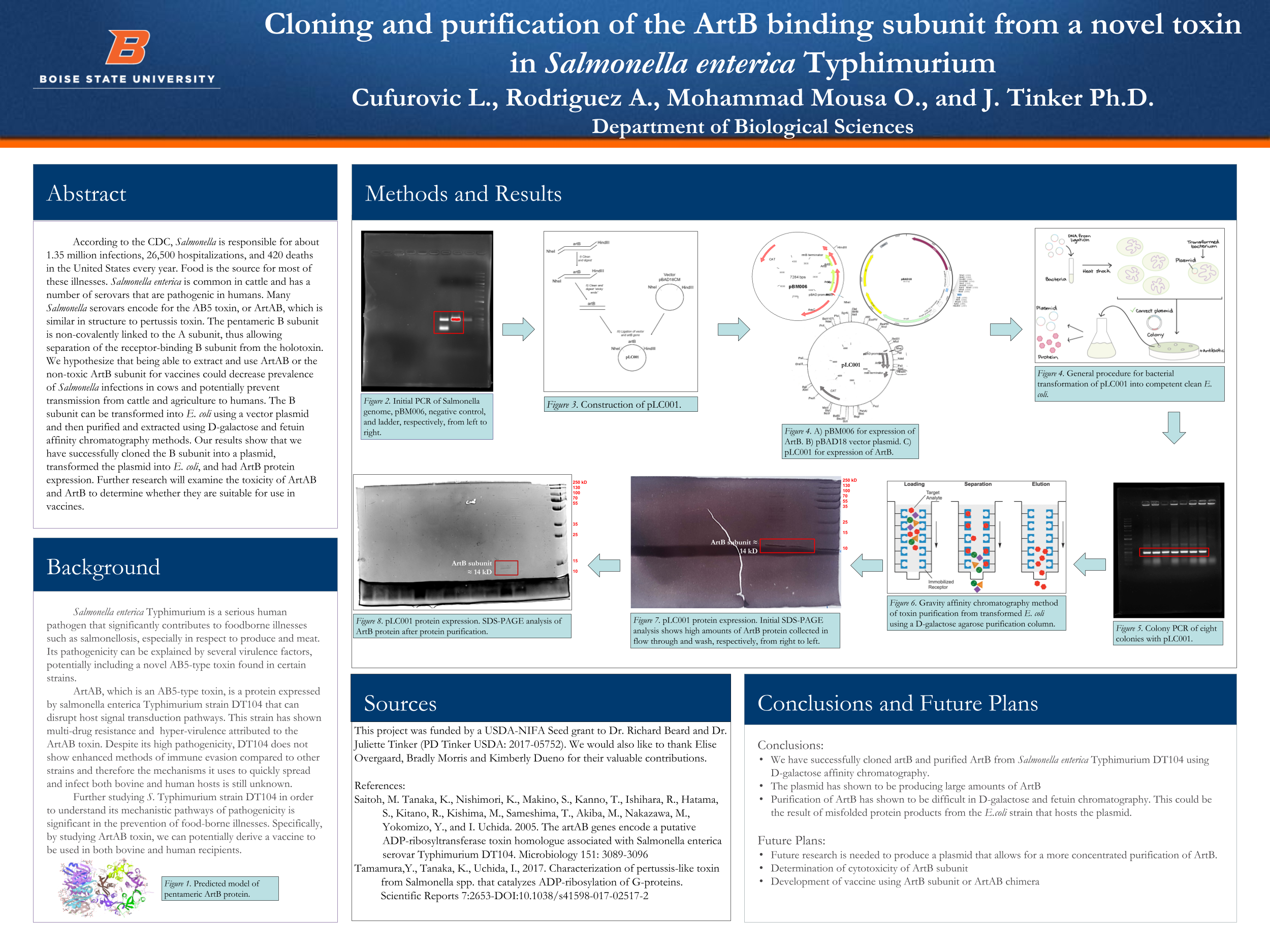 Curfurovic Final Poster - view poster content on post page