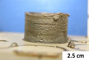 fig 1, 2.5cm