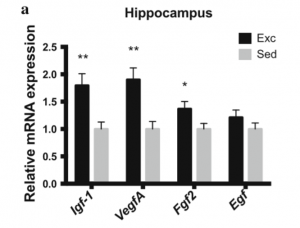 Graph, reletaive mRNA expression of hippocampus, contact presenter for specific details