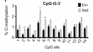 Graph, C-methylation for CpG-I3-3`, contact presenter for specific details