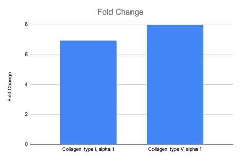 Figure 7 - Collagen, type 1, alpha 1 and Collagen, type V, alpha 1