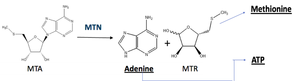 Diagram, contact presenter for details