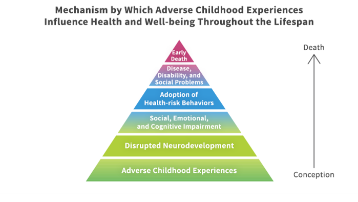 Triangle indicating mechanisms from conception to death starting with adverse childhood experiences, disrupted neurodevelopment, social emotional and cognitive impairment, adoption of health-risk behaviors, disease disability, and social problems, and early death