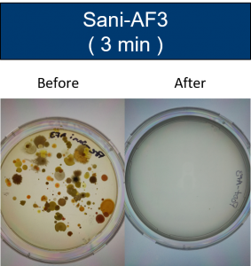 Before and after growth results with Sani-AF3 (3 min)