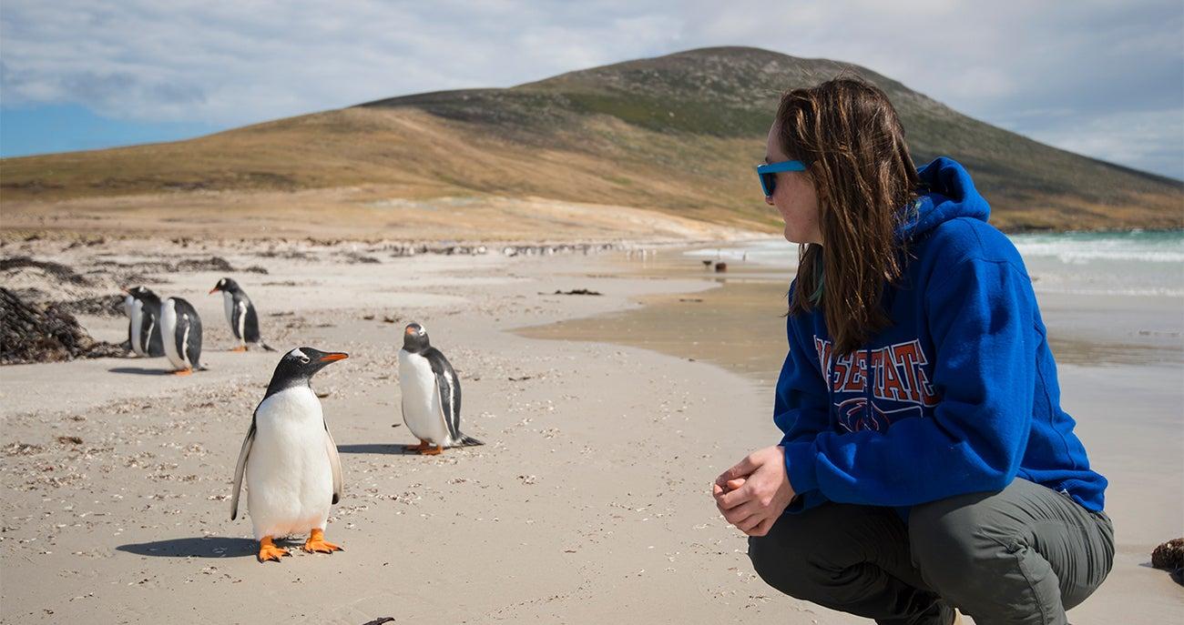 Falkland_005-web
